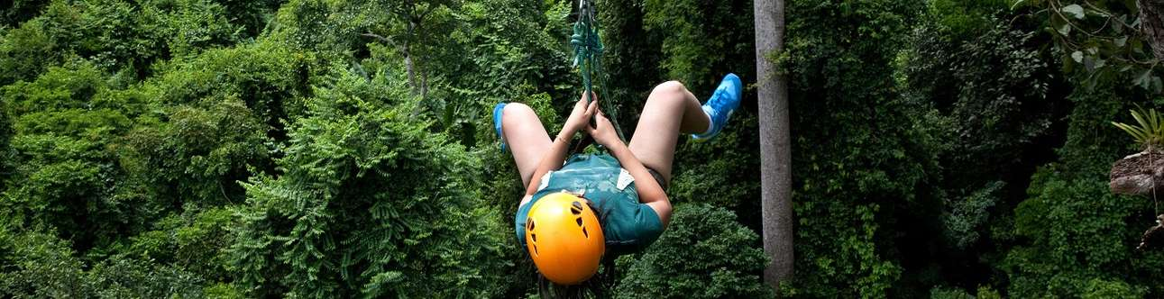 Thrilling Flight of the Gibbon visit for a memorable trip