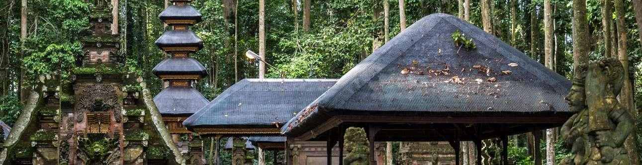 Visit the Sacred Monkey Forest Ubud in Bali