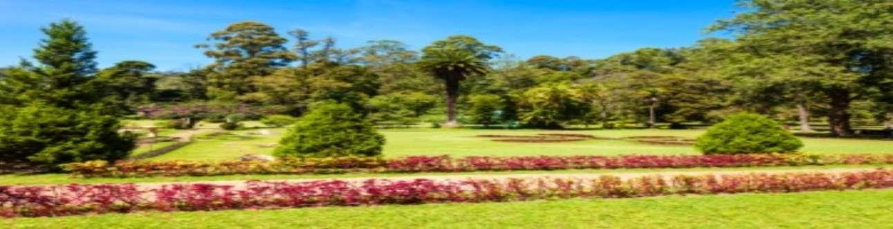 Visit the Beautiful Victoria Park in Nuwara Eliya
