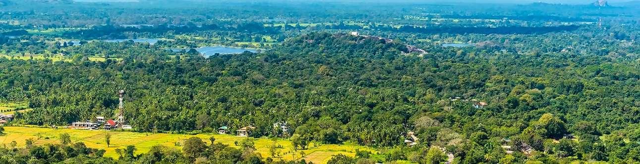 Welcome to beautiful Sigiriya City in Sri Lanka