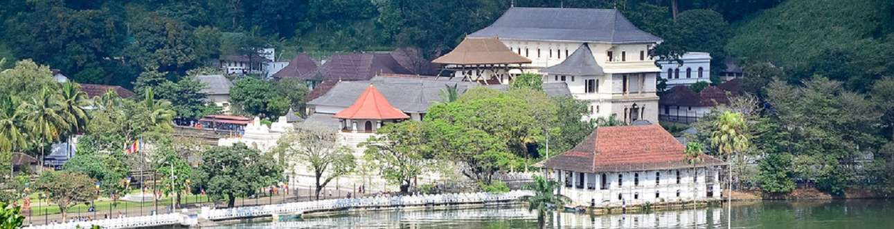 Visit the Buddhist temple in the city of Kandy, Sri Lanka.