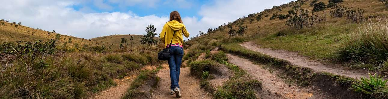 Do Hiking At Horton Plains National Park in Kandy