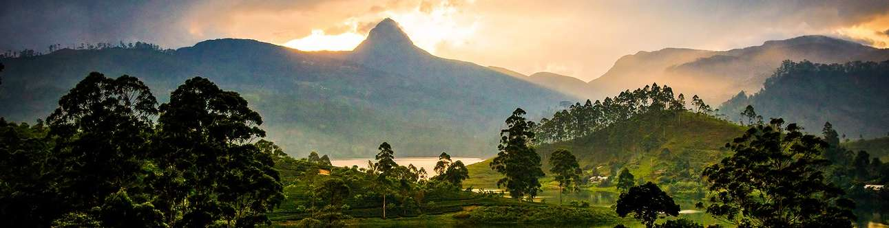 Do Hiking at the Sri Pada's peak in Sri Lanka