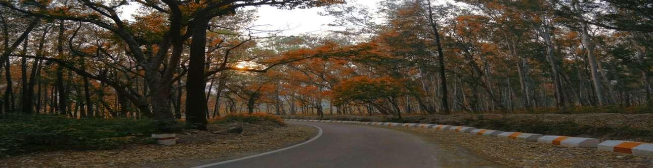 Visit the beautiful Kalsi in Dehradun