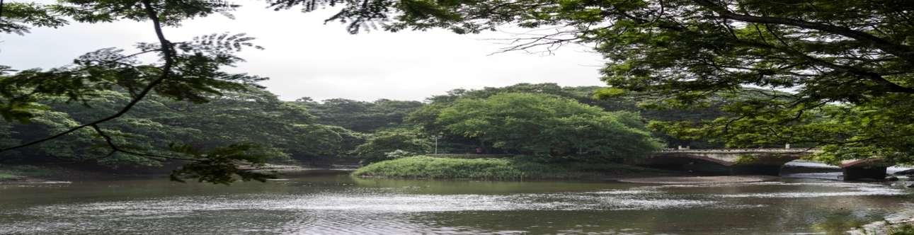 Visit the Sanjay Gandhi National Park in Mumbai
