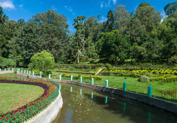 Explore Sim's Park on your Ooty vacation
