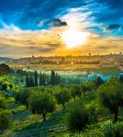 Blissful Israel Family Package