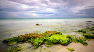 Beauty of Kalapathar Beach in Andaman.