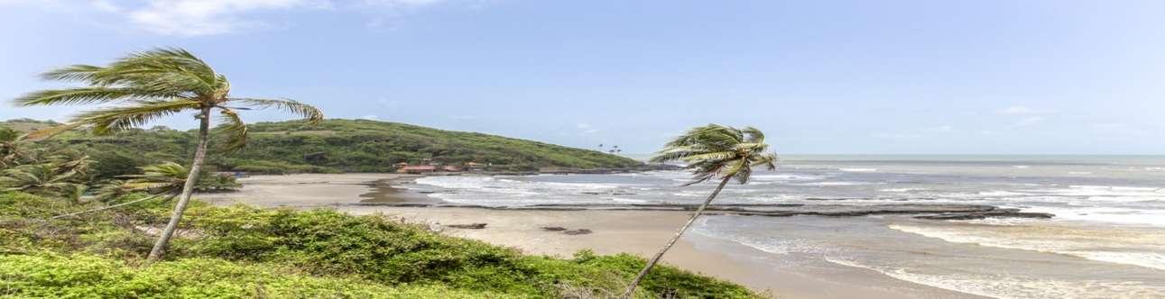 Have Fun at the Cavelossim Beach in Goa