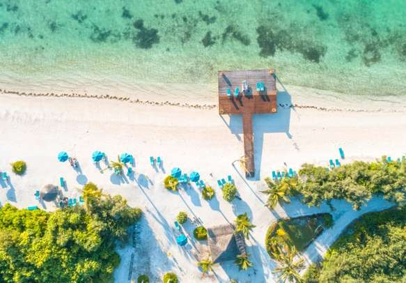 Spend some time relaxing and rejuvenating on the beach at Canareef Resort