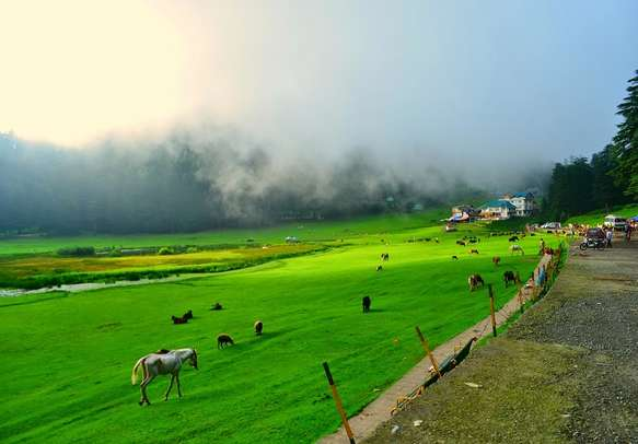 Green pastures of Khajjiar