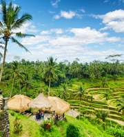 Simply Bali Honeymoon Package