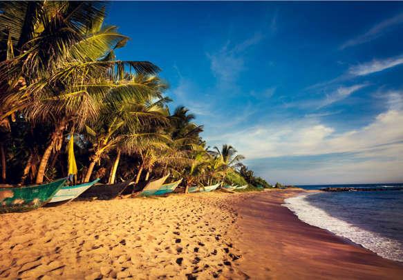 Relax at the sun-kissed Bentota Beach