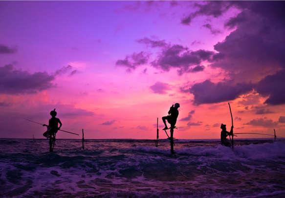 Watch the still fishing in Sri Lanka