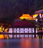 Scenic Sri Lanka Family Tour Package