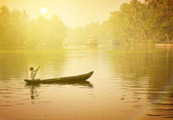The extensive view of the Kerala backwaters will leave you enchanted