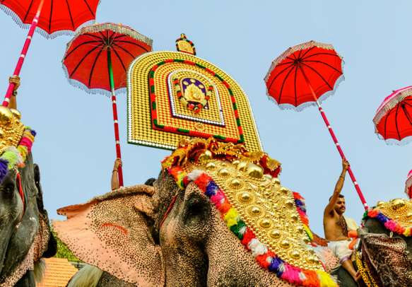 Elephants dressed up in traditional attire in Kerala