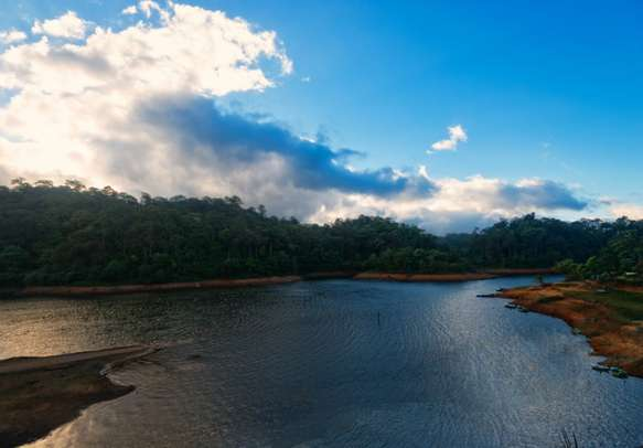 The calm waters of the Thekkady river will leave you enchanted