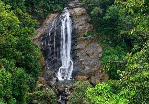 Enjoy a grand view of the Attukal waterfalls in Munnar