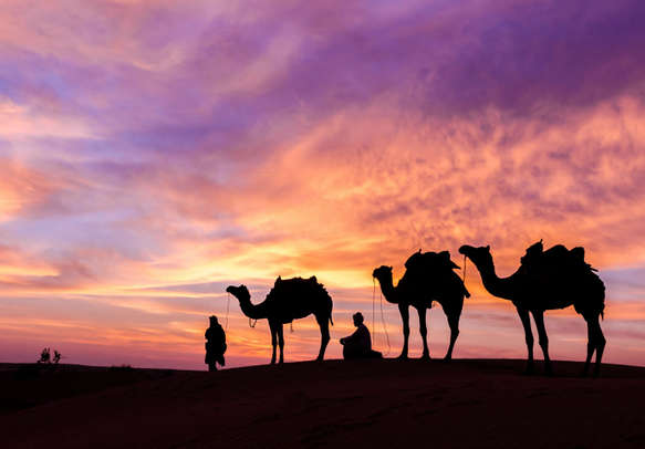 Ride a camel on your enticing tour to Dubai