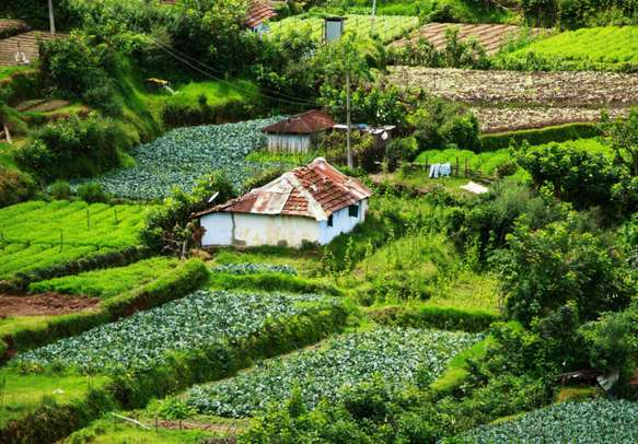 God's own country, Kerala, welcomes you with open arms