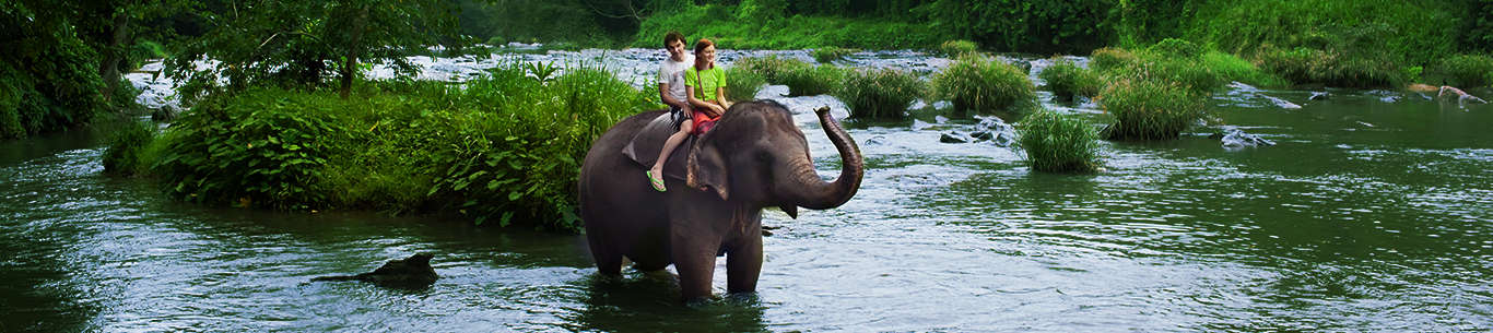 Get some for some fun-filled moments on your Sri Lanka holiday
