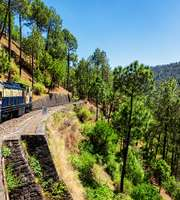 Divine Himachal Honeymoon Tour From Delhi By Cab