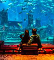 Luxe Palm Atlantis Dubai Honeymoon Package