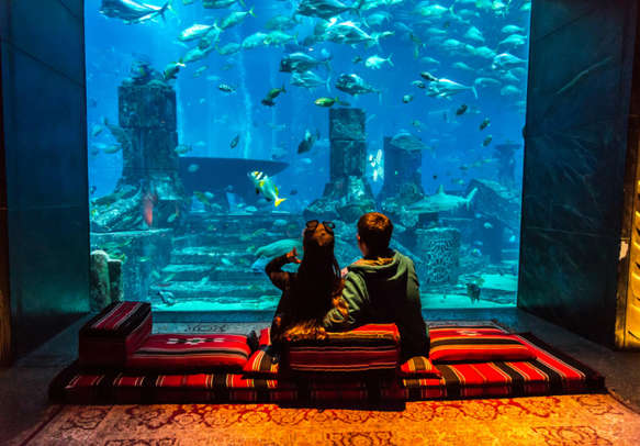 Gaze at the wondrous marine life at Lost Chambers together