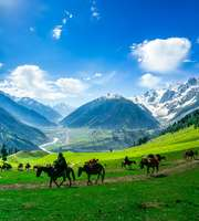 Kashmir Family Tour Package Via Katra