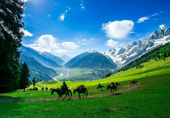 Ride on ponies in the beautiful valley of Pahalgam