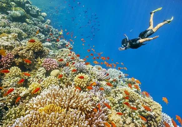 This Maldives trip will be perfect for adventure lovers