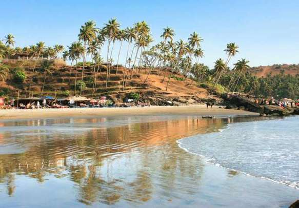 Enjoy your holiday in Goa