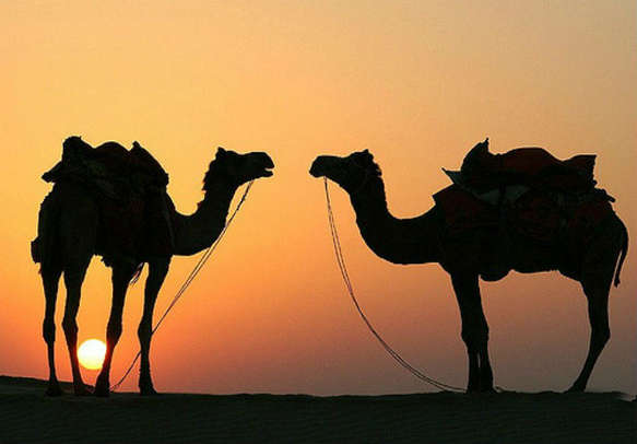 Surreal Sunset In Rajasthan