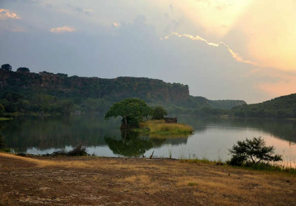 Experience the charisma of Ranthambore