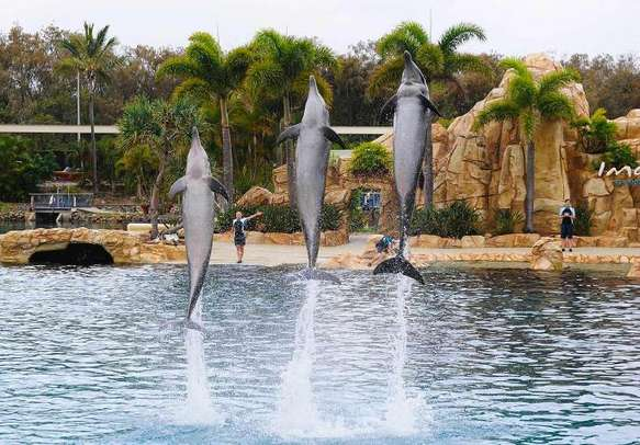 Gold Coast has some of the most scenic attractions