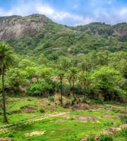 Mesmeric Mount Abu Honeymoon Package