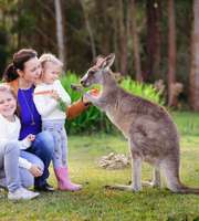 The Ultimate Australia Vacation Package: Nature At Its Best