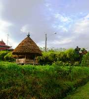 Breezy Bali Honeymoon Package