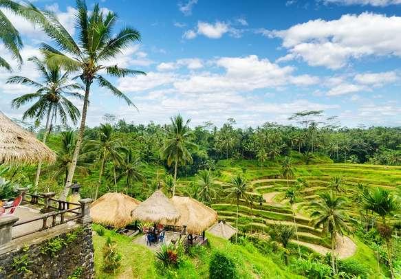 Outdoor restaurant above rice terrace in Bali.