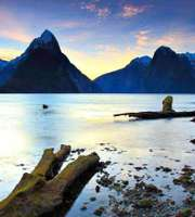 Picturesque New Zealand Honeymoon Package