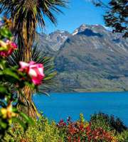 Splendid New Zealand Honeymoon Package From Delhi