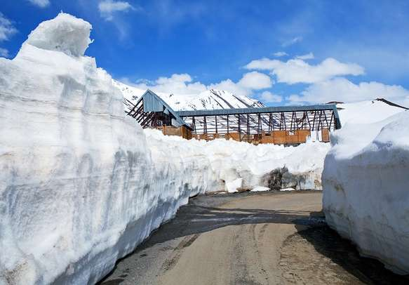 Slushy road with snow on both sides.