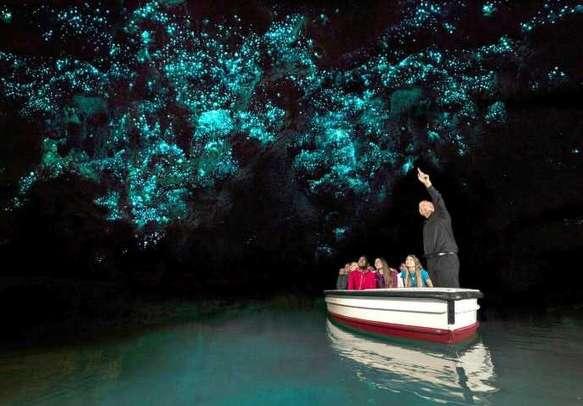 Take a tour of the beautiful glowworm caves in Waitomo.