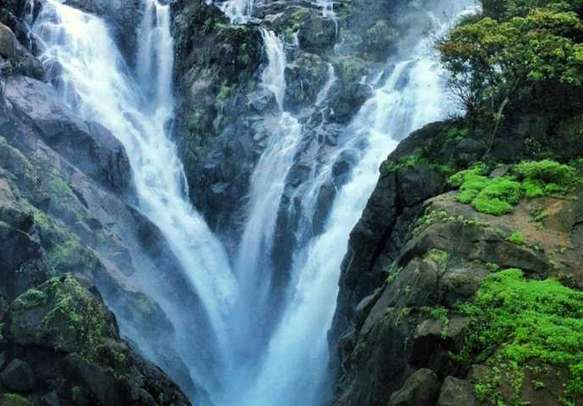 Feel one with nature at the majestic Dudhsagar Waterfalls