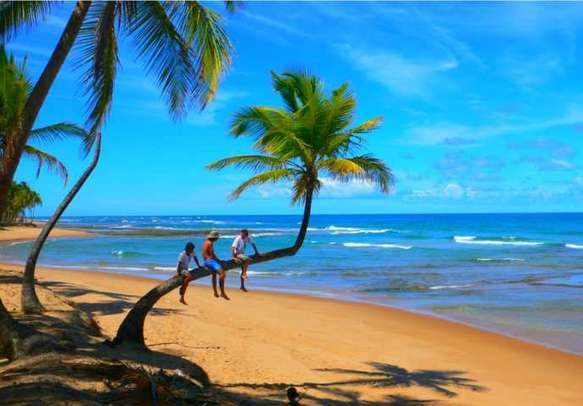 Goa is popular as a party capital of India