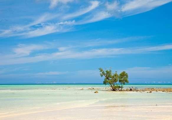 Pristine Beach on Havelock Island.