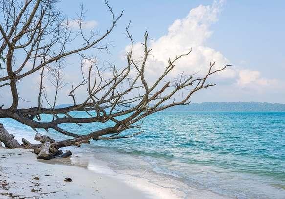 Beauty of Vijay Nagar Beach in Andaman.