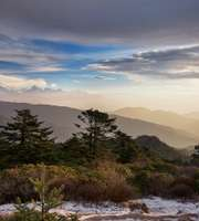 Darjeeling Family Package for 3 Days