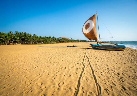 The mesmerizing beaches in Sri Lanka are perfect for honeymoon couples.